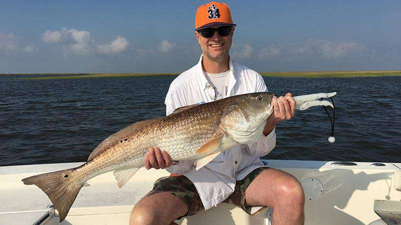Louisiana Bull Redfish